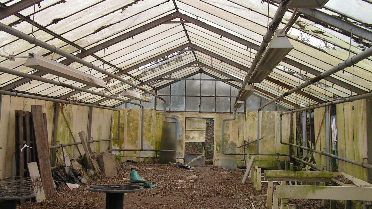 2010: baufälliges Gewächshaus vor dem Abriss