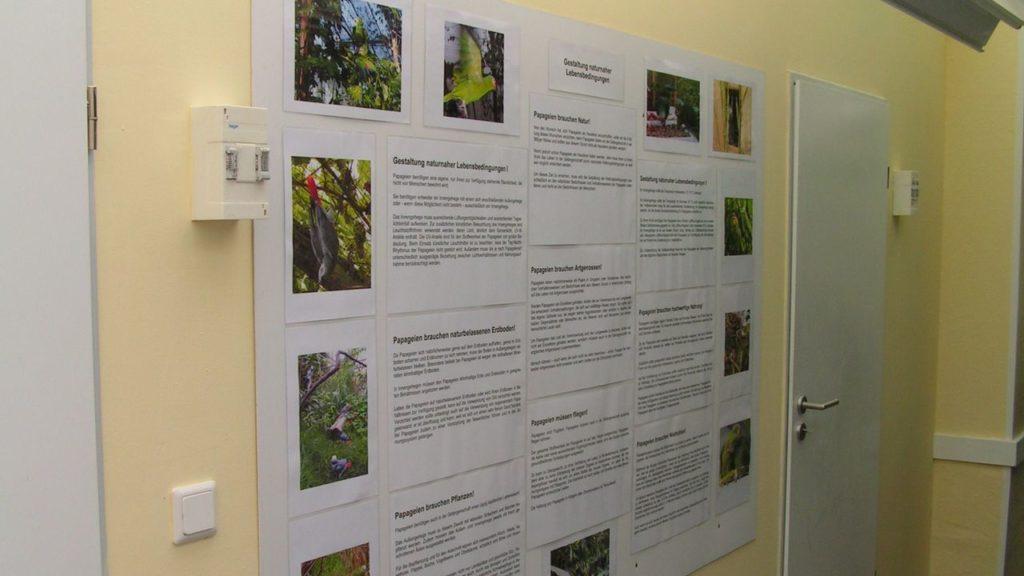 Ausstellungsraum: Informationen über naturnahe Lebensbedingungen