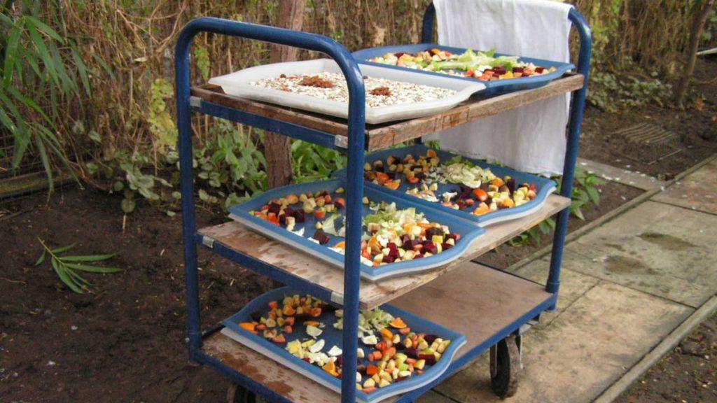 Futterzubereitung: Futtertabletts – fertig für den Transport zu den Futtertischen