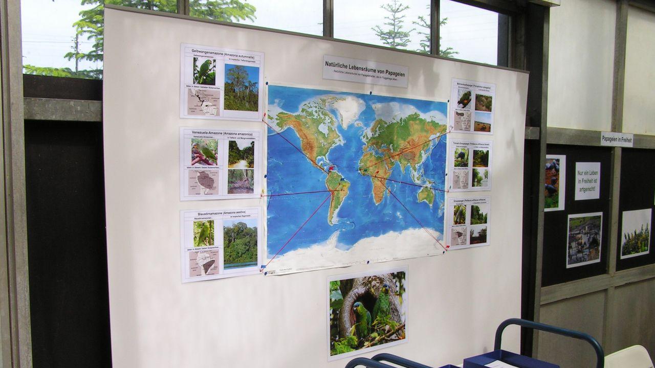 Besucherzone: Informationen über natürliche Verbreitungsgebiete einiger Papageienarten