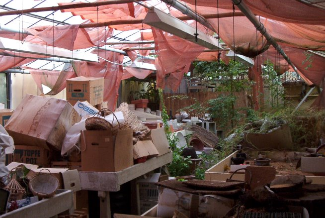 ein Gewächshaus voller Gärtnereiartikel