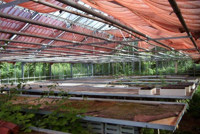 Pflanztische, Stoffschattierungen und Heizungsrohre in dem einen Gewächshaus