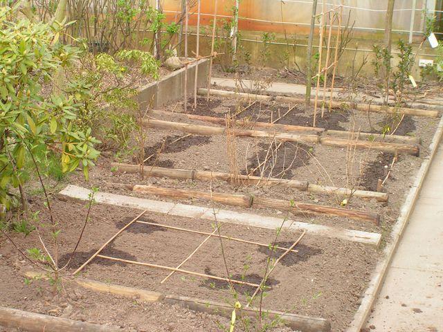 Frühjahr 2008: Die Beete für einen Schaugarten werden angelegt.